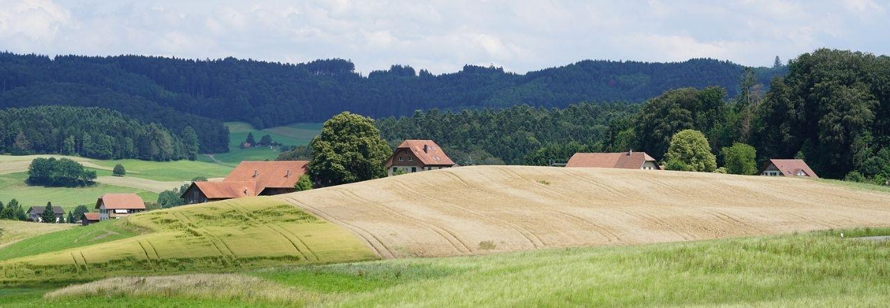 fantasyfarm
